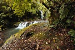 World heritage area elabana falls Royalty Free Stock Image