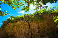 World Heritage Sefa Utaki, spiritual space in Okinawa, japan Royalty Free Stock Photo