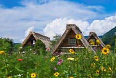 The world heritage Shirakawa-go.  Stock Images