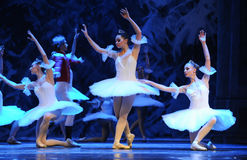 The world of ice and snow-The first act of fourth field snow Country  -The Ballet  Nutcracker Stock Photo