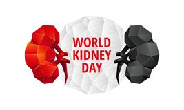 World Kidney Day background. Abstract anatomy organ. Kidneys 3D polygon style. World Kidney Day background. Abstract anatomy organ. Kidneys in 3D polygon style Royalty Free Stock Photo