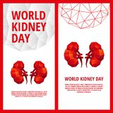 World Kidney Day flyer template. Abstract anatomy organ. Kidneys in 3D polygon style Stock Images