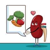 World kidney day cartoon. World kidney day icon  illustration graphic design Royalty Free Stock Photo