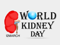 World Kidney Day. Royalty Free Stock Images