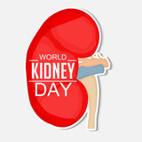 World Kidney Day Royalty Free Stock Images