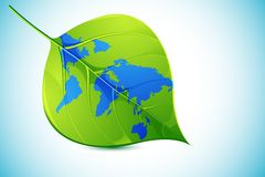 World in Leaf Royalty Free Stock Photo