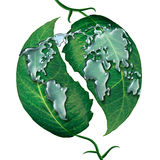 World Leaf Water Drop Royalty Free Stock Photography