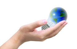 World in light bulb Stock Image