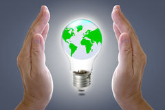 World in light bulb and hands. Stock Image