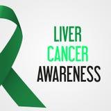World liver cancer day awareness poster stock illustration