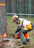 World logging championship 2012 Stock Image