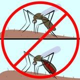 World malaria day. 25 April world malaria day. The mosquito drinks the blood vector illustration. Vector control malaria Stock Image