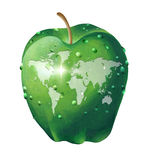 World map on an apple Stock Photography