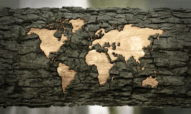 World map carved in tree bark Stock Photo
