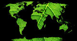 World map. World map, continents in green leaf background Stock Photography