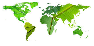 World map - continents leafs texture. Global world map: recycling, environment protection, global warming concept Stock Image