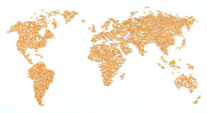 World map (corn). A world map made out of corn, can be used in the context of starvation Royalty Free Stock Photo