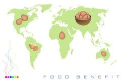 World Map with Egg Production and Consumption Stock Photography