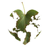 World map in a leaf. It is about consuming the world resources Royalty Free Stock Photo