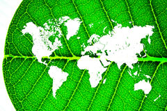 World map in a leaf Stock Photos