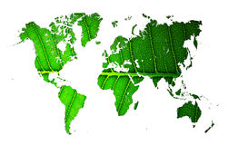 World map with leaf texture Stock Photography
