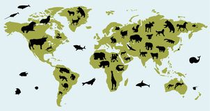 World map with pictures of animals Royalty Free Stock Images