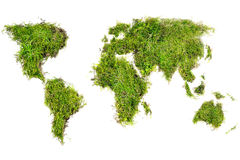 World map placed of natural turf with moss, isolated on white Royalty Free Stock Photography