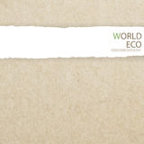 World map recycled paper craft stick on white background Royalty Free Stock Photos