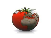 World map tomato Stock Image
