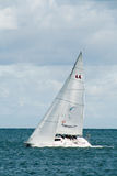 World Match Racing Tour Royalty Free Stock Photo