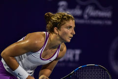World No.20 Tennis player Sara Errani Royalty Free Stock Photos