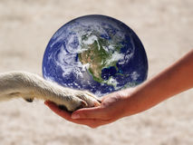 The world in our hand (2) Royalty Free Stock Photo