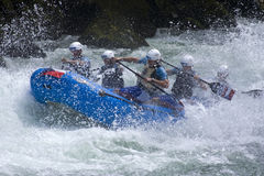 Free World Rafting Champs Banja Luka 2009 Stock Image - 9441291