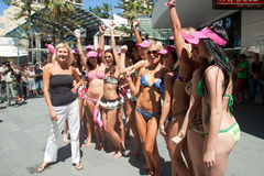 World Record bikini parade in Gold Coast Stock Images