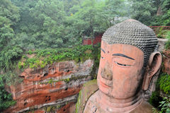 World's biggest Buddha in Leshan closeup Stock Image