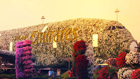 The world`s biggest natural flower garden. Structure forming the shape of the Airbus A380. DUBAI UAE - DECEMBER 8 2017: Dubai Miracle Garden: The world`s stock images