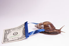 World's economic imbalance. Mr. Snail is willing To correct the world economic imbalance, he promised this process wont take so long royalty free stock photo