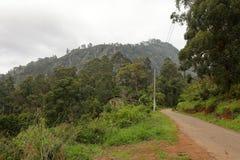 World`s End in the Horton Plains National Park in Sri Lanka. The World`s End in the Horton Plains National Park in Sri Lanka Stock Images