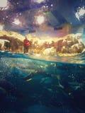 World in sea. The breeder in penguin feeding fish Stock Image