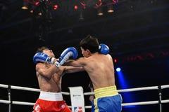World series of boxing: Ukraine Otamans vs British Lionhearts. Kyiv, UKRAINE - January 23, 2014 : Andrew Selby (UK) and Azat Usenaliev (UA) in the ring during stock images