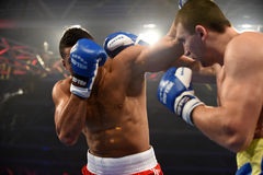 World series of boxing: Ukraine Otamans vs British Lionhearts Royalty Free Stock Image