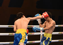 World series of boxing: Ukraine Otamans vs China Dragons Royalty Free Stock Image