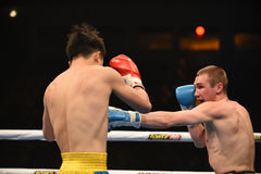 World series of boxing: Ukraine Otamans vs China Dragons Stock Image