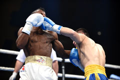 World series of boxing: Ukraine Otamans vs Cuba Domadores Stock Image