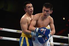 World series of boxing: Ukraine Otamans vs Russian Boxing Team Stock Images