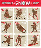 World snow day.Bear plays winter sport.Icon set Royalty Free Stock Photography