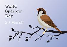 World Sparrow Day. Beautiful vector illustration of the date of sparrows. Holiday background with bird. Illustration protect the environment. Vector illustration Stock Images