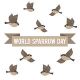 World Sparrow Day. Vector Illustration for the holiday bird. Space for text. It can be used for decoration greetings, invitations, advertising banner, poster Royalty Free Stock Image