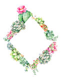 World of succulents and cactus collection. Colorful floral rhombus frame border with leaves,succulent plant,branche and cactus.World of succulents and cactus Royalty Free Stock Photos