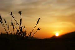 World at sunset Stock Photography
